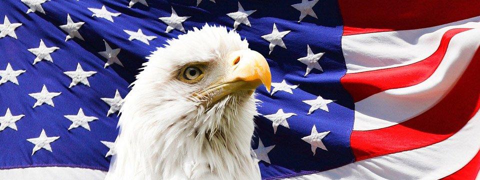 Honor Memorial Day